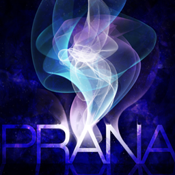 PRANA [CHALLENGE]