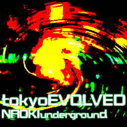 tokyoEVOLVED (TYPE2)